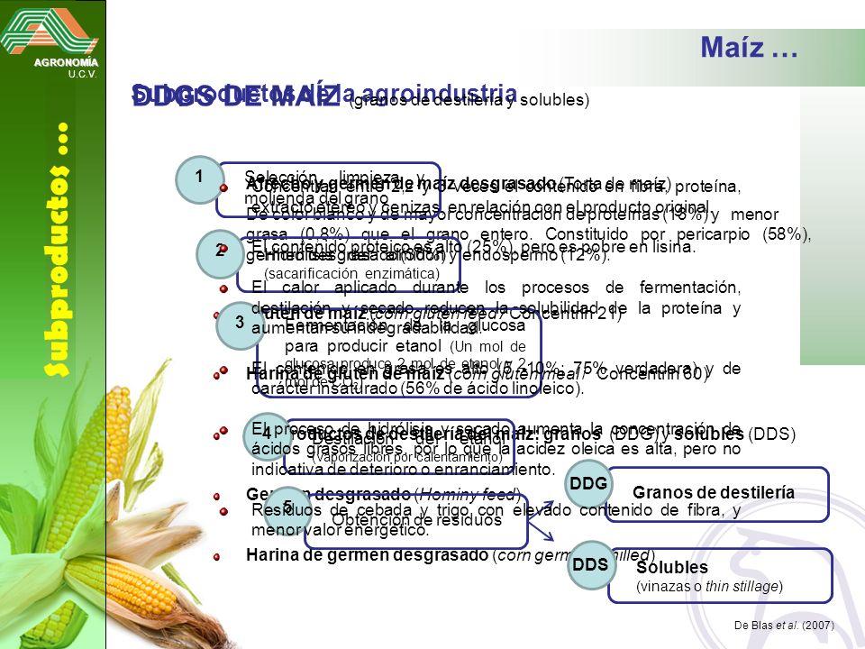 AGRONOMÍA U.C.V. Subproductos … Maíz … Subproductos de la agroindustria Afrecho y germen de maíz desgrasado (Torta de maíz) De color blanco y de mayor