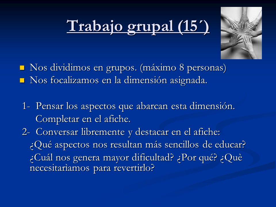Trabajo grupal (15´) Nos dividimos en grupos. (máximo 8 personas) Nos dividimos en grupos. (máximo 8 personas) Nos focalizamos en la dimensión asignad