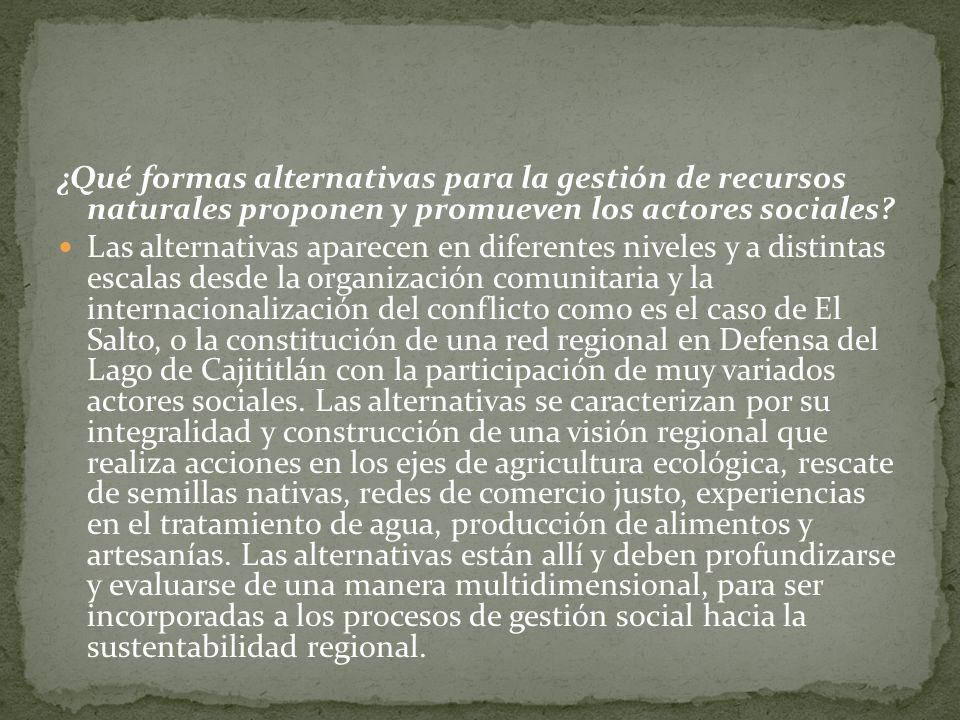 ¿Qué formas alternativas para la gestión de recursos naturales proponen y promueven los actores sociales? Las alternativas aparecen en diferentes nive