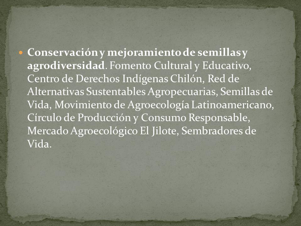 Conservación y mejoramiento de semillas y agrodiversidad. Fomento Cultural y Educativo, Centro de Derechos Indígenas Chilón, Red de Alternativas Suste