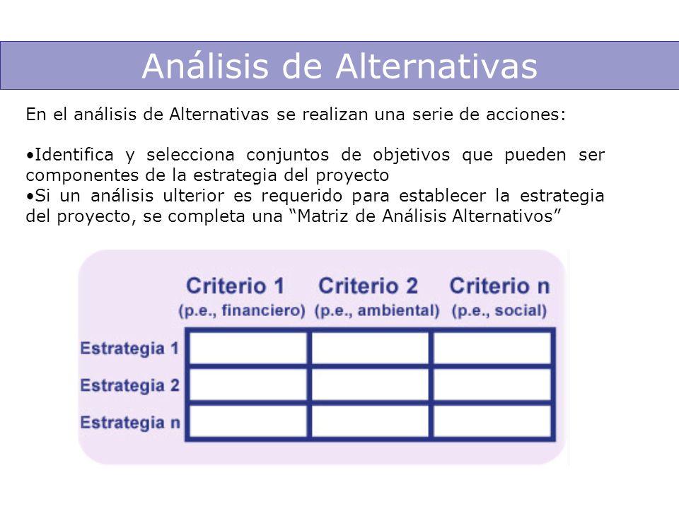 Análisis de Alternativas En el análisis de Alternativas se realizan una serie de acciones: Identifica y selecciona conjuntos de objetivos que pueden s