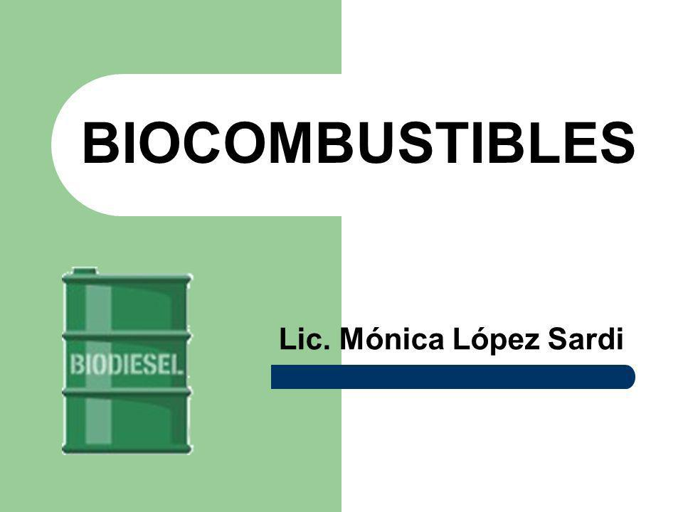 BIOCOMBUSTIBLES Lic. Mónica López Sardi