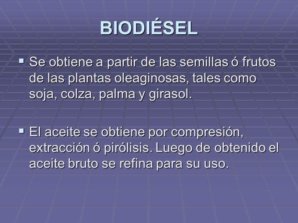 BIODIÉSEL Se obtiene a partir de las semillas ó frutos de las plantas oleaginosas, tales como soja, colza, palma y girasol. Se obtiene a partir de las