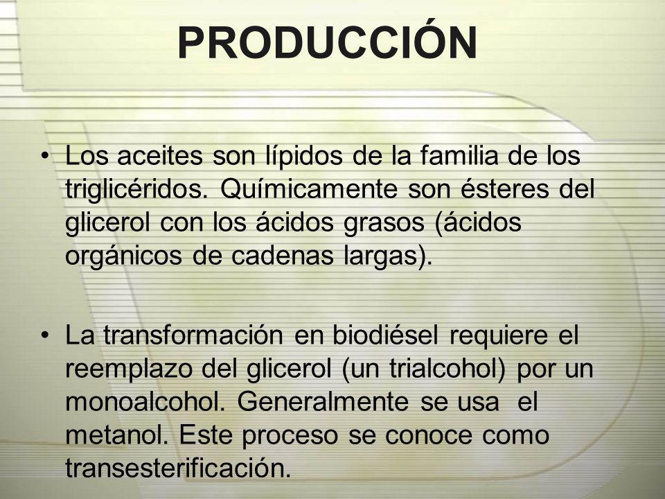 PRODUCCIÓN Los aceites son lípidos de la familia de los triglicéridos. Químicamente son ésteres del glicerol con los ácidos grasos (ácidos orgánicos d