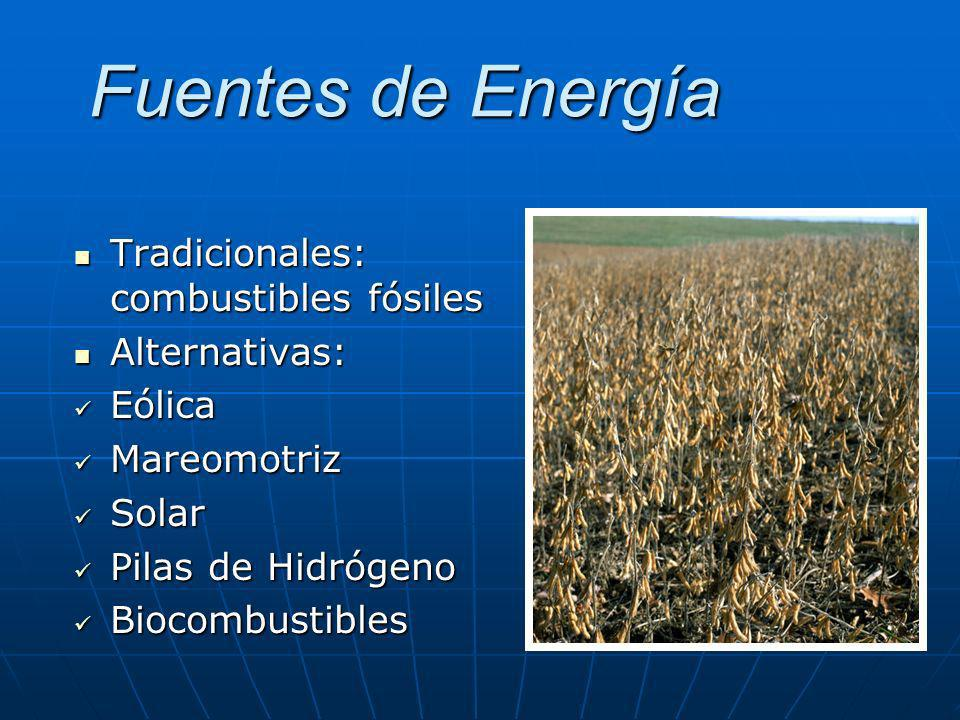 Fuentes de Energía Tradicionales: combustibles fósiles Alternativas: Eólica Mareomotriz Solar Pilas de Hidrógeno Biocombustibles
