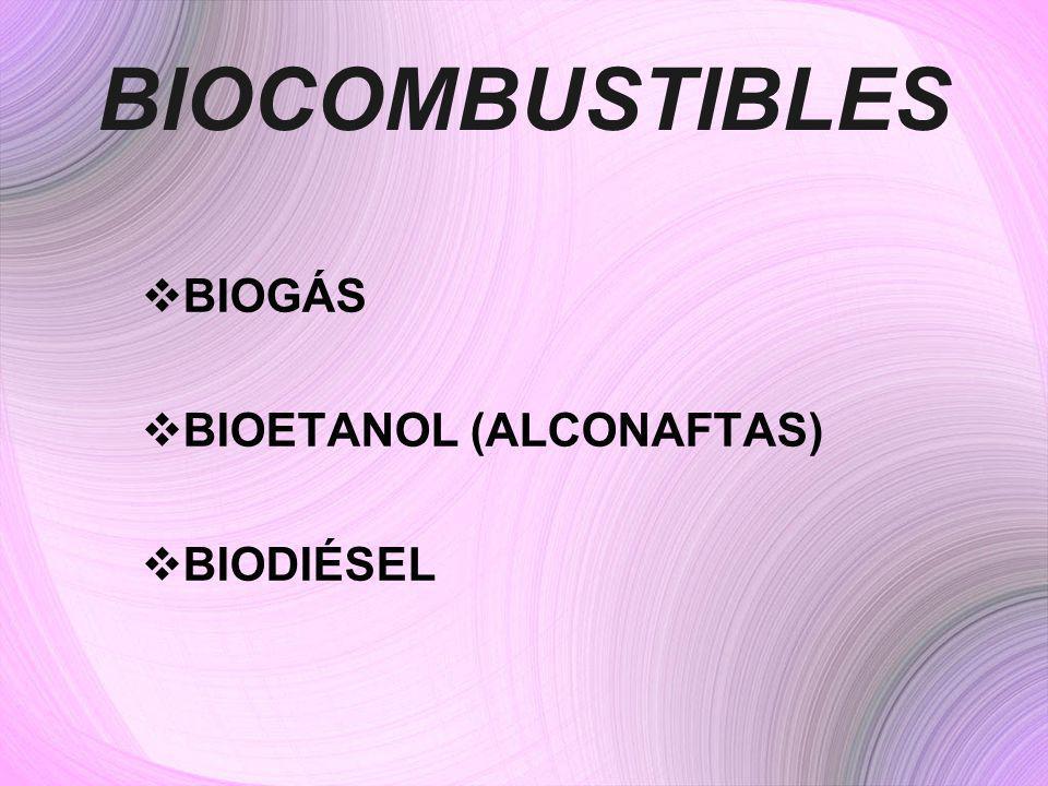 BIOCOMBUSTIBLES BIOGÁS BIOETANOL (ALCONAFTAS) BIODIÉSEL