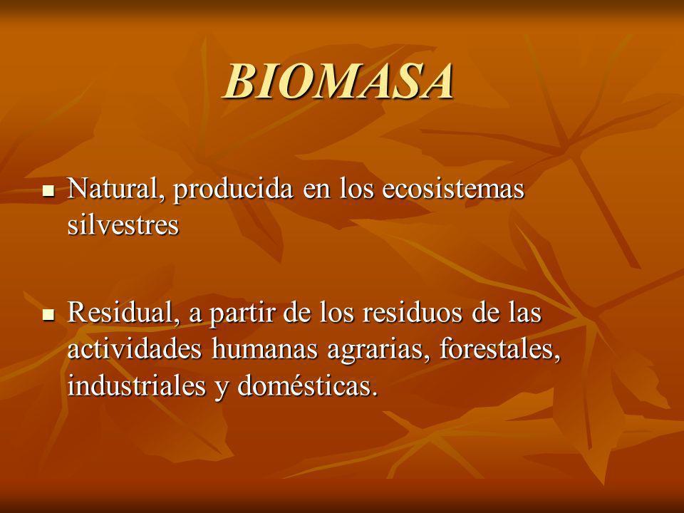 BIOMASA Natural, Natural, producida en los ecosistemas silvestres Residual, Residual, a partir de los residuos de las actividades humanas agrarias, forestales, industriales y domésticas.