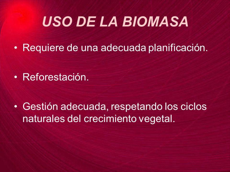 USO DE LA BIOMASA Requiere de una adecuada planificación. Reforestación. Gestión adecuada, respetando los ciclos naturales del crecimiento vegetal.