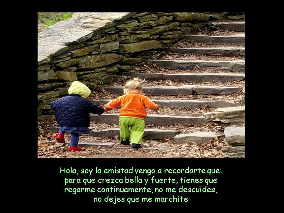 Hola, soy la amistad vengo a recordarte que: para que crezca bella y fuerte, tienes que regarme continuamente, no me descuides, no dejes que me marchite