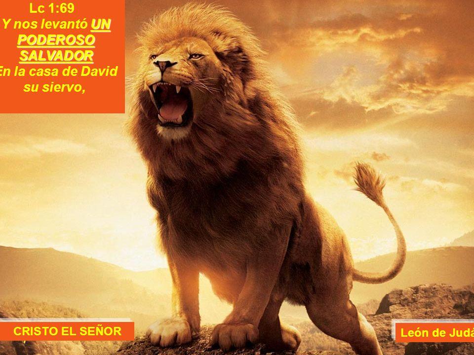 Lc 1:69 UN PODEROSO SALVADOR Y nos levantó UN PODEROSO SALVADOR En la casa de David su siervo, CRISTO EL SEÑOR León de Judá