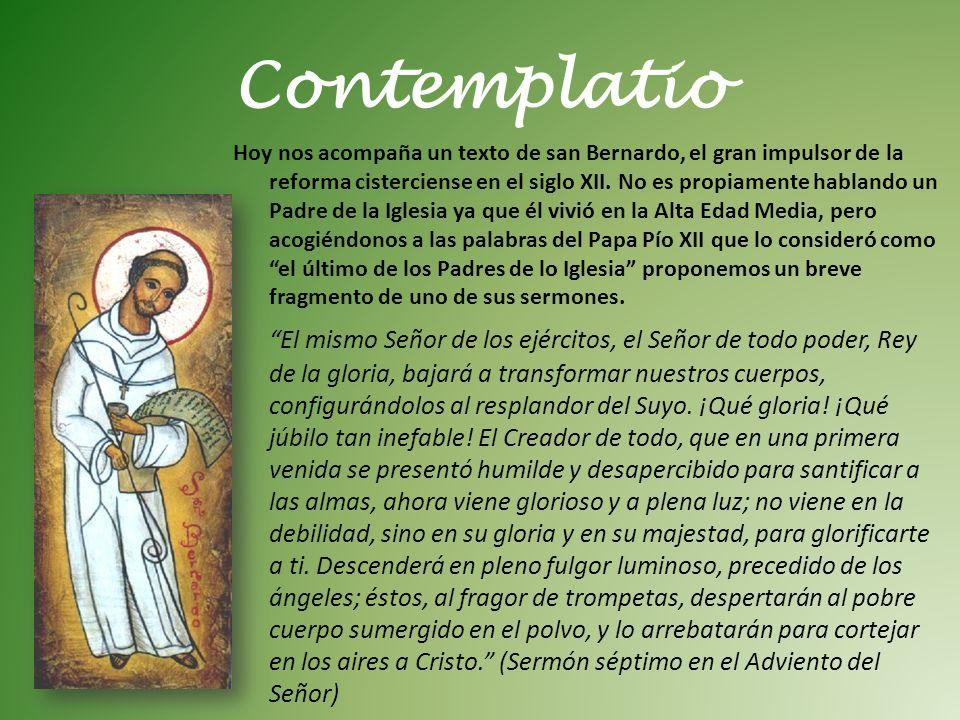 Hoy nos acompaña un texto de san Bernardo, el gran impulsor de la reforma cisterciense en el siglo XII. No es propiamente hablando un Padre de la Igle