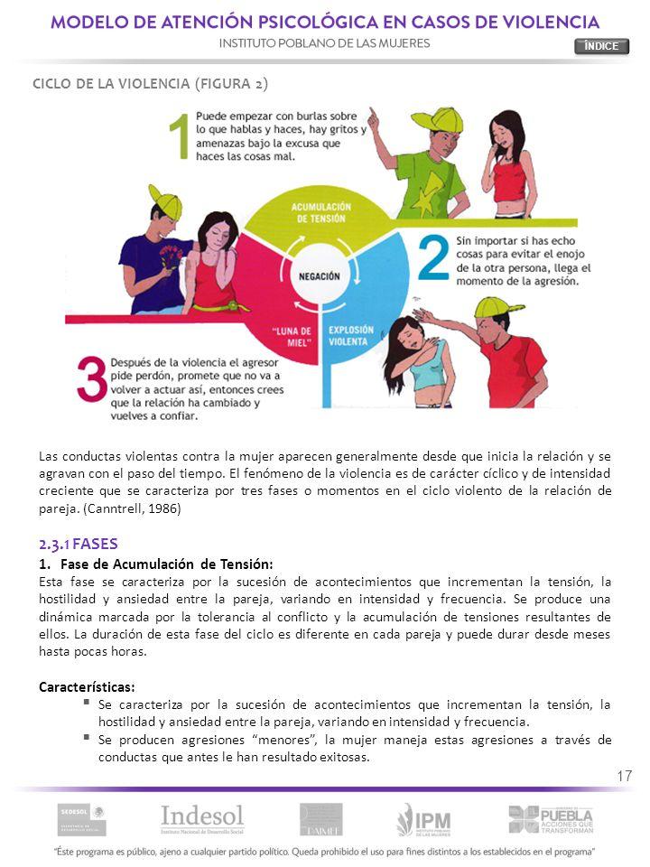 17 Las conductas violentas contra la mujer aparecen generalmente desde que inicia la relación y se agravan con el paso del tiempo. El fenómeno de la v
