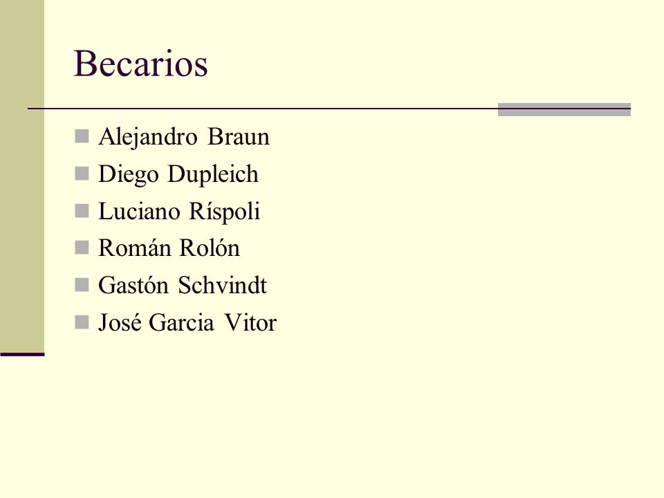 Becarios Alejandro Braun Diego Dupleich Luciano Ríspoli Román Rolón Gastón Schvindt José Garcia Vitor