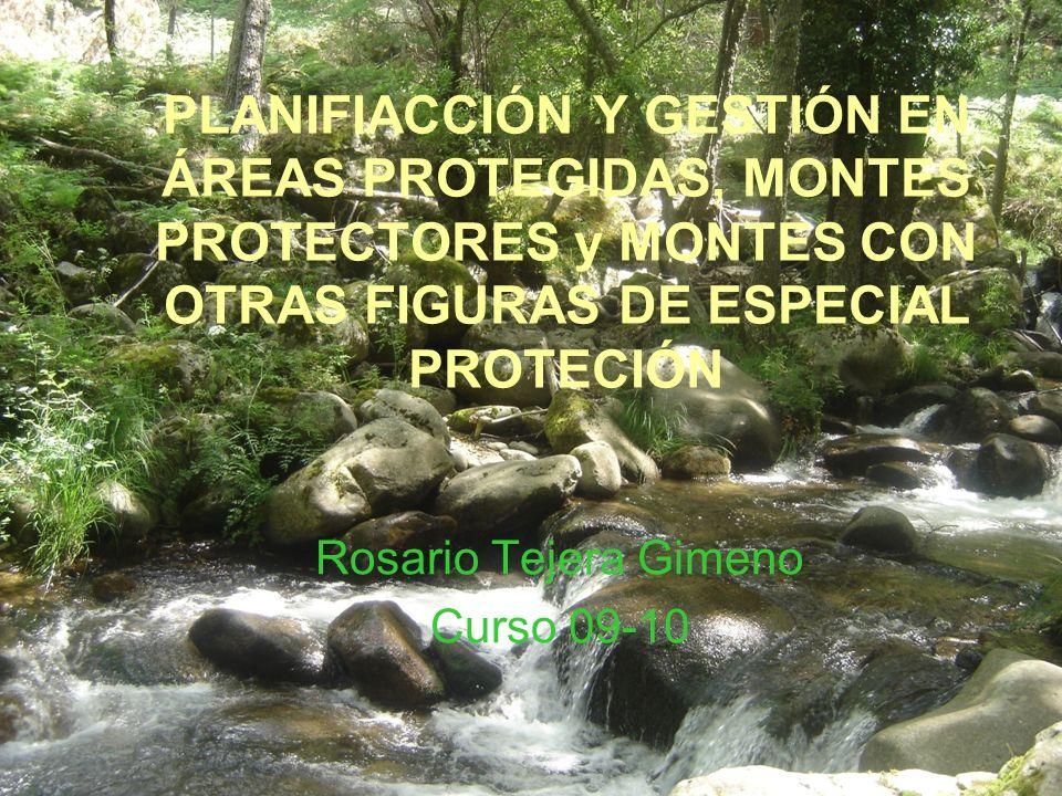 PLANIFIACCIÓN Y GESTIÓN EN ÁREAS PROTEGIDAS, MONTES PROTECTORES y MONTES CON OTRAS FIGURAS DE ESPECIAL PROTECIÓN Rosario Tejera Gimeno Curso 09-10