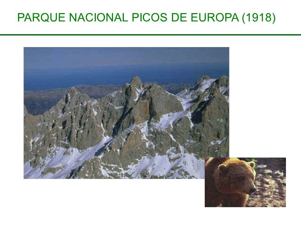 PARQUE NACIONAL PICOS DE EUROPA (1918)