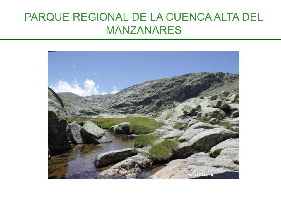 PARQUE REGIONAL DE LA CUENCA ALTA DEL MANZANARES Foto Chaimae