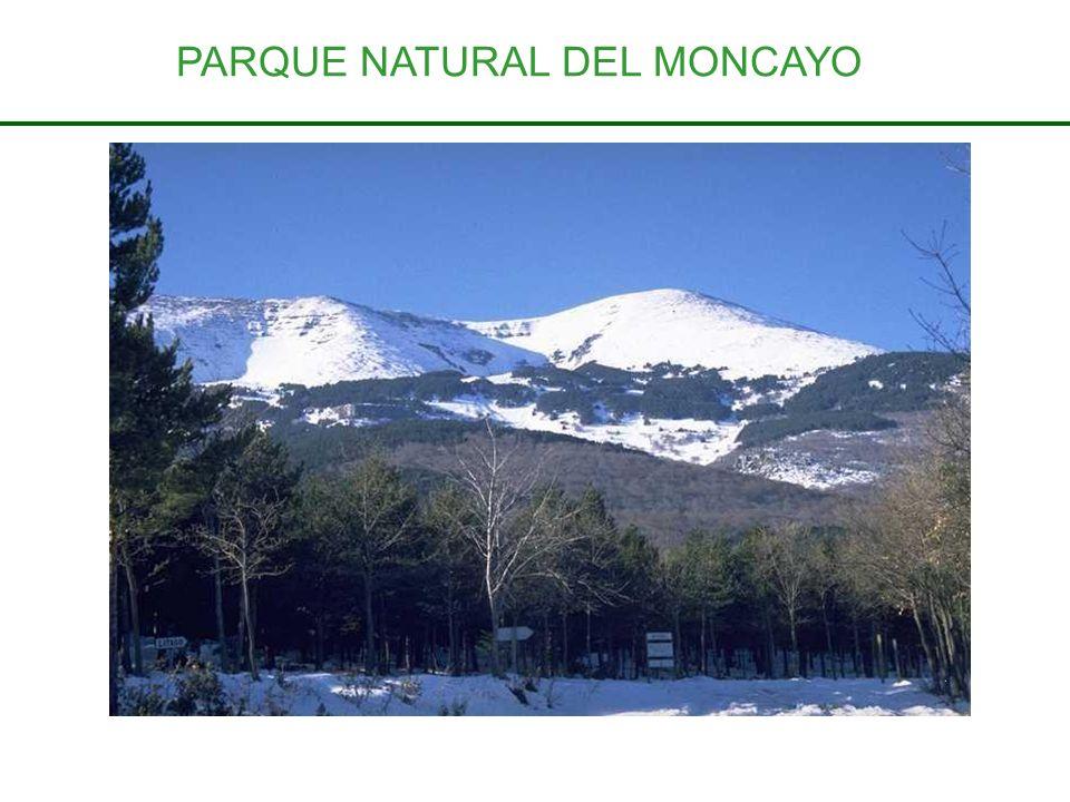 PARQUE NATURAL DEL MONCAYO