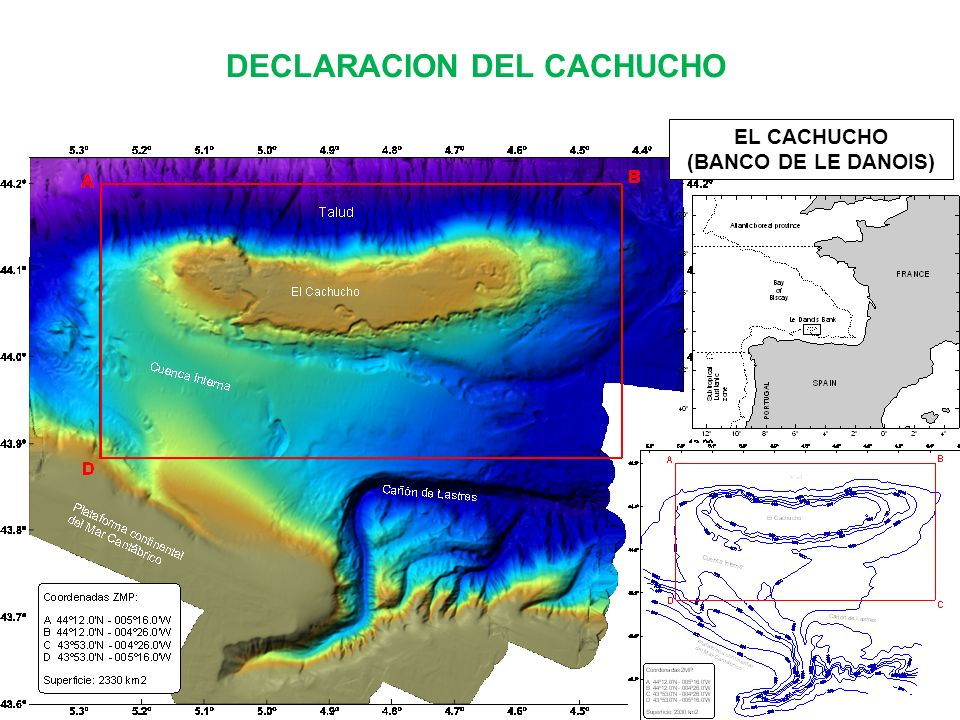 DECLARACION DEL CACHUCHO EL CACHUCHO (BANCO DE LE DANOIS)