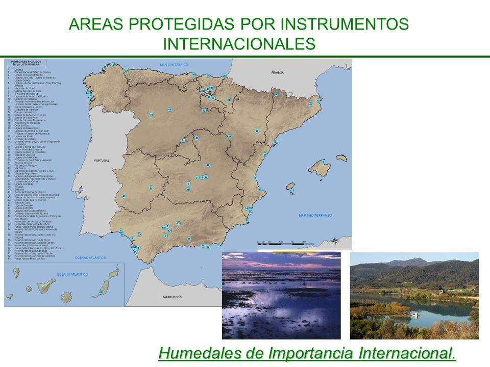 Humedales de Importancia Internacional. AREAS PROTEGIDAS POR INSTRUMENTOS INTERNACIONALES