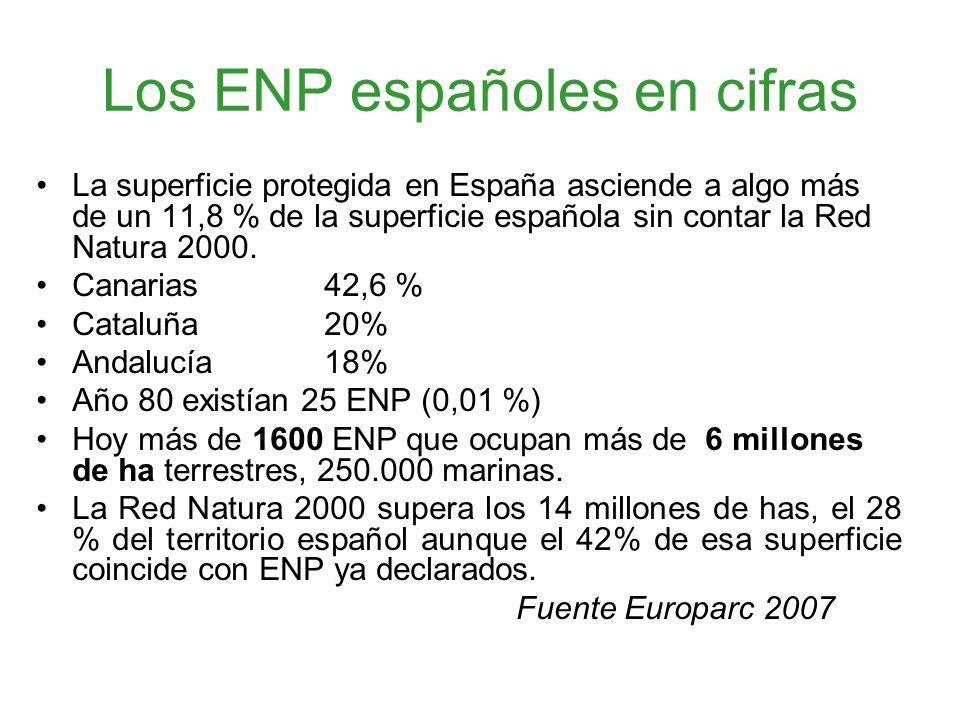 Los ENP españoles en cifras La superficie protegida en España asciende a algo más de un 11,8 % de la superficie española sin contar la Red Natura 2000