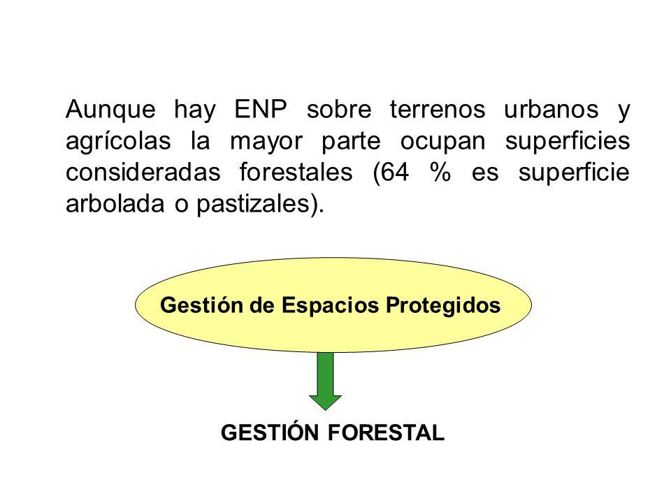 Aunque hay ENP sobre terrenos urbanos y agrícolas la mayor parte ocupan superficies consideradas forestales (64 % es superficie arbolada o pastizales).