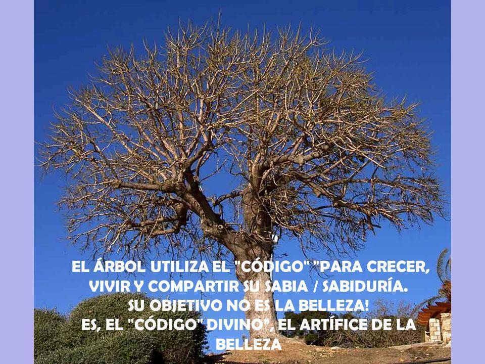CONVIVIR, PUES …….ÉS EQUILIBRIO!!!.