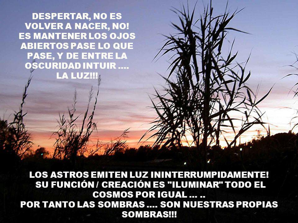 NO TE PRIVES! DE DAR EL MAXIMO, NO TE PRIVES! DE ANHELAR LO MEJOR, ES EL CORAZÓN EL QUE ACTÚA, LA MENTE UTILIZARÁ