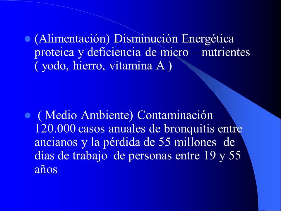 (Alimentación) Disminución Energética proteica y deficiencia de micro – nutrientes ( yodo, hierro, vitamina A ) ( Medio Ambiente) Contaminación 120.00