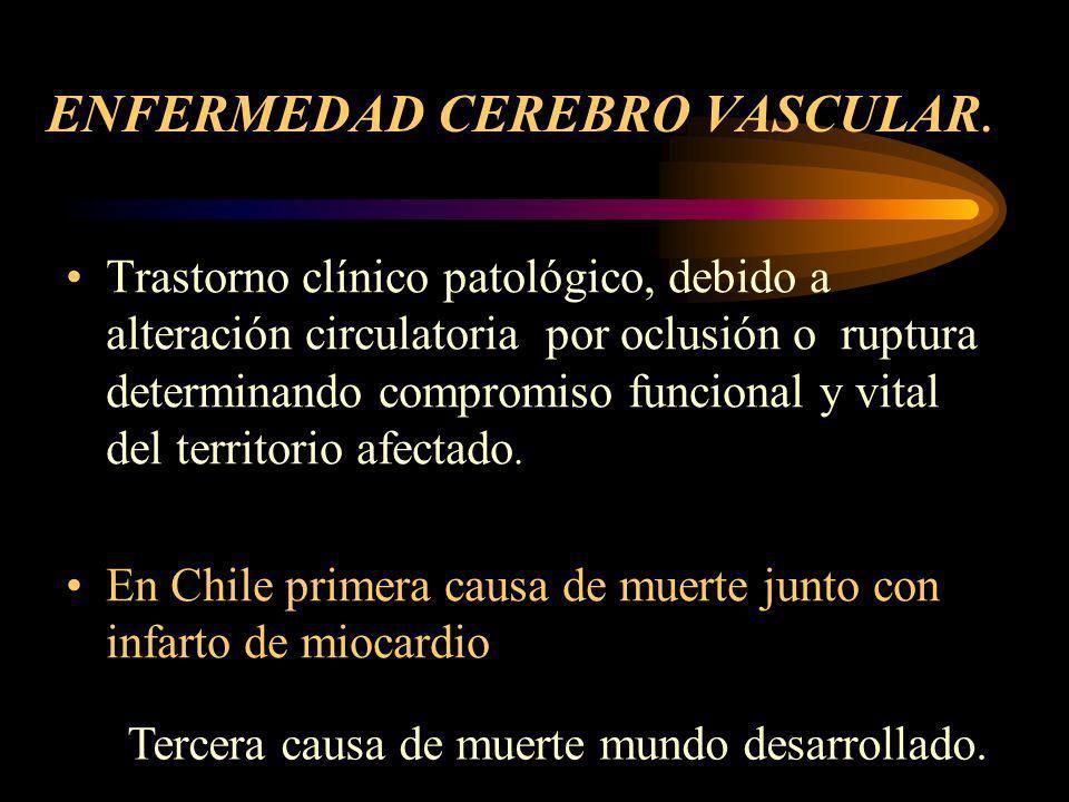 ACCIDENTE CEREBRO VASCULAR Dra. Pilar Canales. Neurólogo Hospital Regional Talca