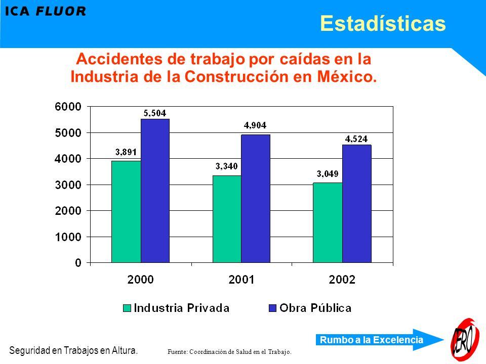 Rumbo a la Excelencia Seguridad en Trabajos en Altura. Estadísticas Accidentes de trabajo por caídas en la Industria de la Construcción en México. Fue