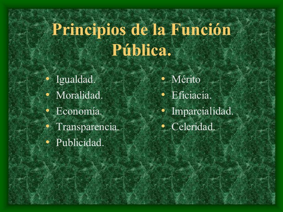 Principios de la Función Pública.Igualdad. Moralidad.