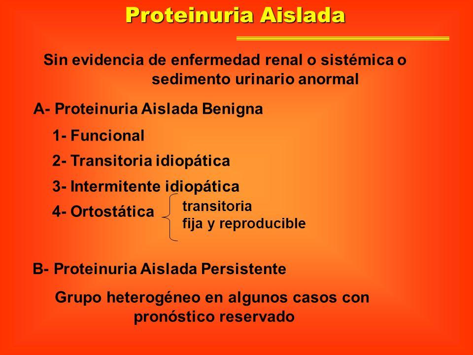Proteinuria Aislada Sin evidencia de enfermedad renal o sistémica o sedimento urinario anormal A- Proteinuria Aislada Benigna B- Proteinuria Aislada P