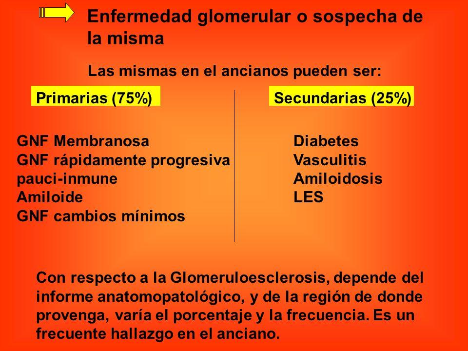 Enfermedad glomerular o sospecha de la misma Las mismas en el ancianos pueden ser: Primarias (75%)Secundarias (25%) Diabetes Vasculitis Amiloidosis LE