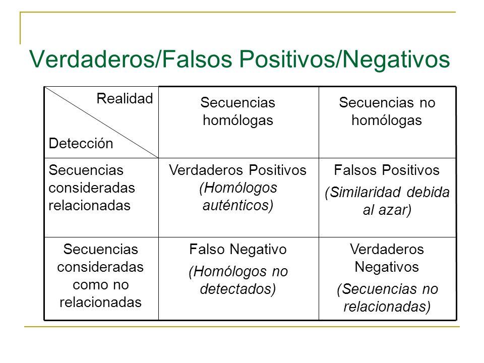 Verdaderos/Falsos Positivos/Negativos Verdaderos Negativos (Secuencias no relacionadas) Falso Negativo (Homólogos no detectados) Secuencias consideradas como no relacionadas Falsos Positivos (Similaridad debida al azar) Verdaderos Positivos (Homólogos auténticos) Secuencias consideradas relacionadas Secuencias no homólogas Secuencias homólogas Realidad Detección