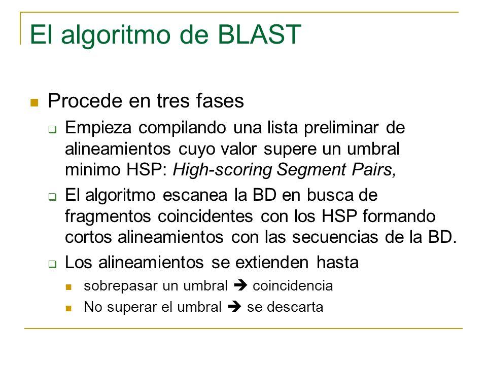 El algoritmo de BLAST Procede en tres fases Empieza compilando una lista preliminar de alineamientos cuyo valor supere un umbral minimo HSP: High-scoring Segment Pairs, El algoritmo escanea la BD en busca de fragmentos coincidentes con los HSP formando cortos alineamientos con las secuencias de la BD.
