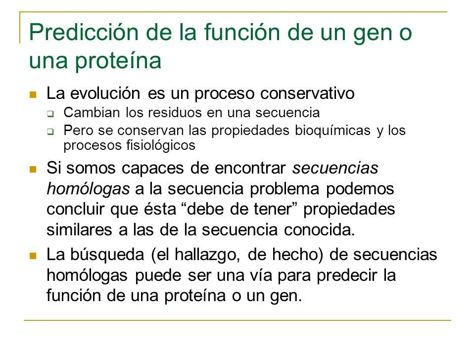 Predicción de la función de un gen o una proteína La evolución es un proceso conservativo Cambian los residuos en una secuencia Pero se conservan las