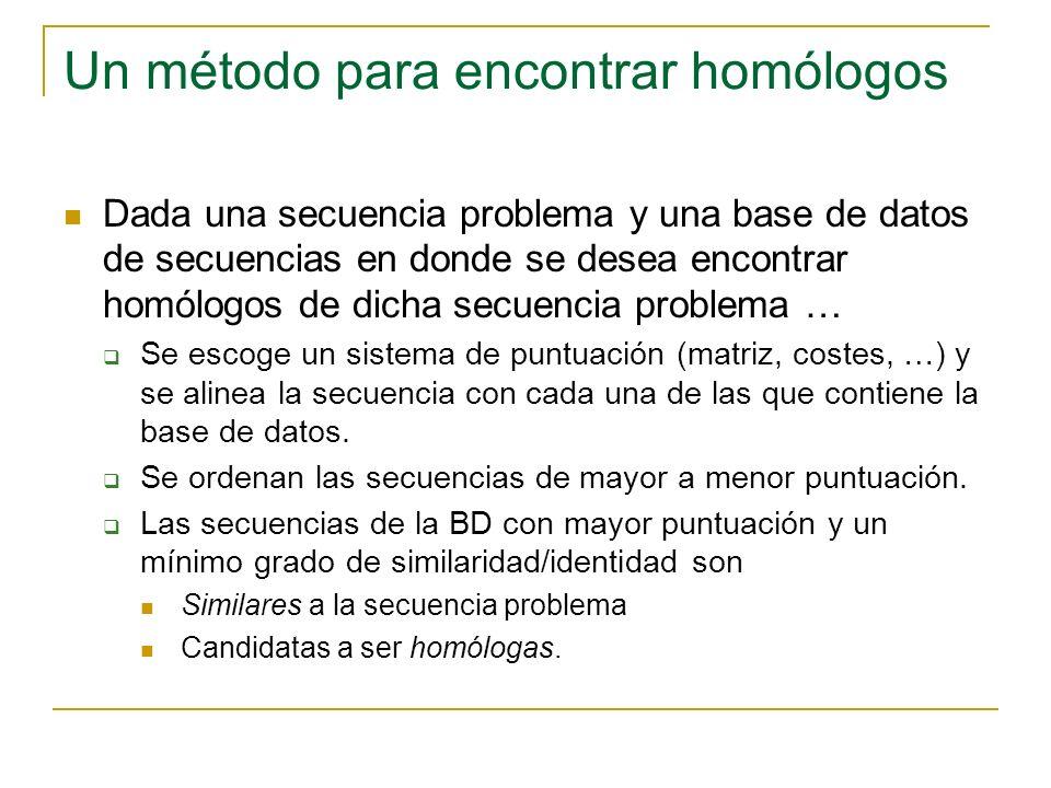 Un método para encontrar homólogos Dada una secuencia problema y una base de datos de secuencias en donde se desea encontrar homólogos de dicha secuencia problema … Se escoge un sistema de puntuación (matriz, costes, …) y se alinea la secuencia con cada una de las que contiene la base de datos.