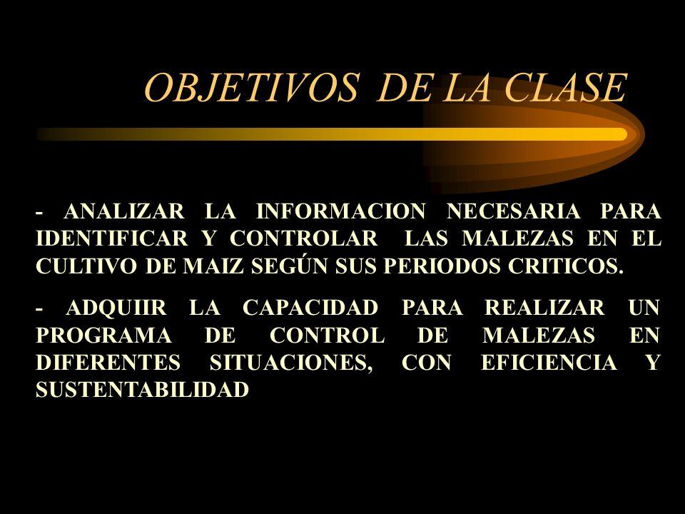 OBJETIVOS DE LA CLASE - ANALIZAR LA INFORMACION NECESARIA PARA IDENTIFICAR Y CONTROLAR LAS MALEZAS EN EL CULTIVO DE MAIZ SEGÚN SUS PERIODOS CRITICOS.