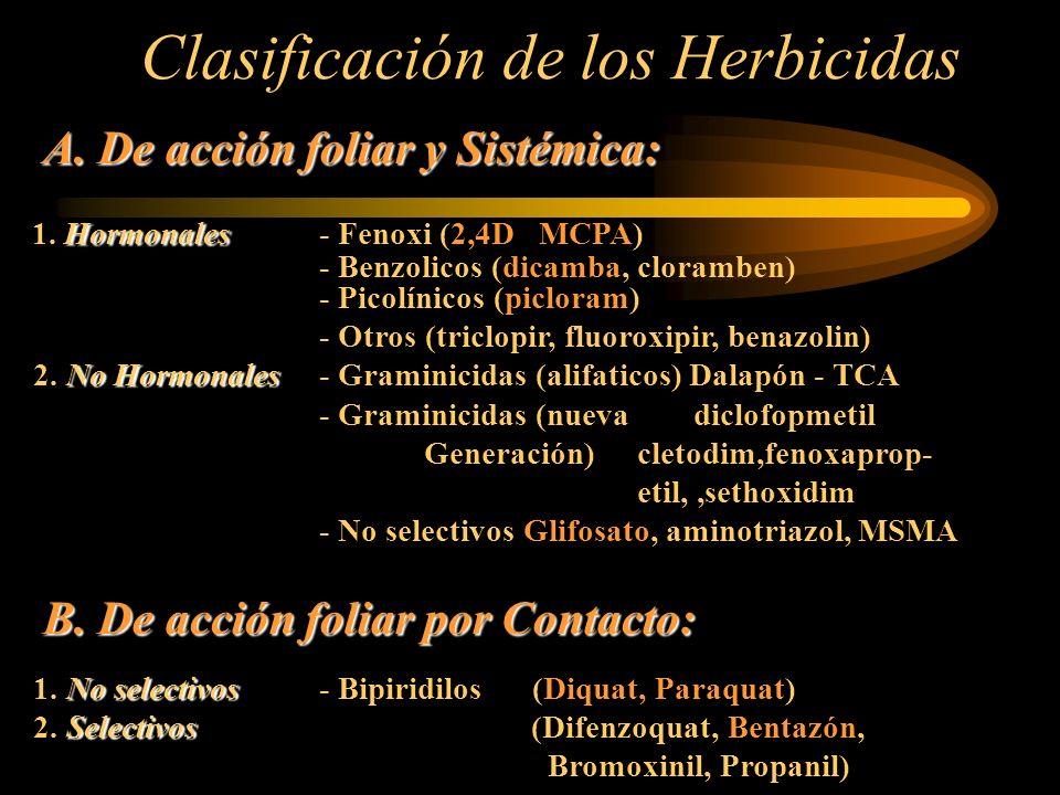 A. De acción foliar y Sistémica: Hormonales 1. Hormonales - Fenoxi (2,4D MCPA) - Benzolicos (dicamba, cloramben) - Picolínicos (picloram) - Otros (tri
