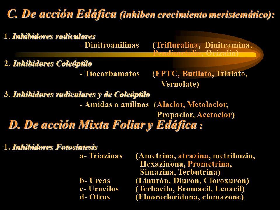 C. De acción Edáfica (inhiben crecimiento meristemático): Inhibidores radiculares 1. Inhibidores radiculares - Dinitroanilinas (Trifluralina, Dinitram