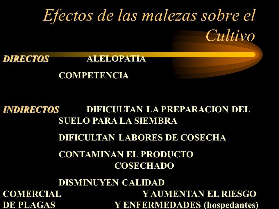 Efectos de las malezas sobre el Cultivo DIRECTOS DIRECTOSALELOPATIA COMPETENCIA INDIRECTOS INDIRECTOSDIFICULTAN LA PREPARACION DEL SUELO PARA LA SIEMB