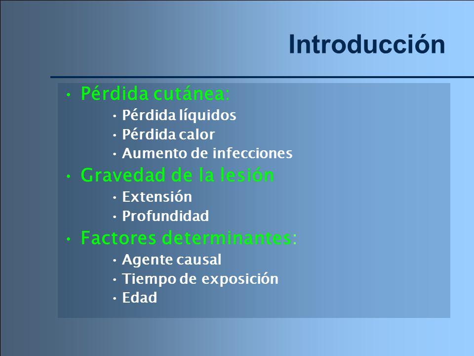 Introducción Pérdida cutánea: Pérdida líquidos Pérdida calor Aumento de infecciones Gravedad de la lesión Extensión Profundidad Factores determinantes