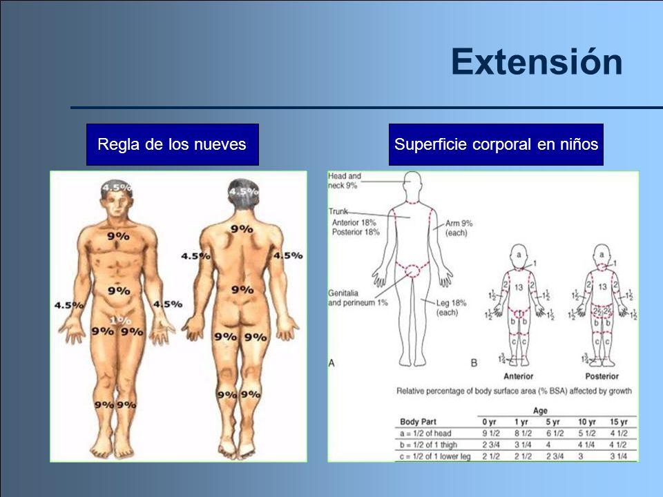 Extensión Regla de los nuevesSuperficie corporal en niños