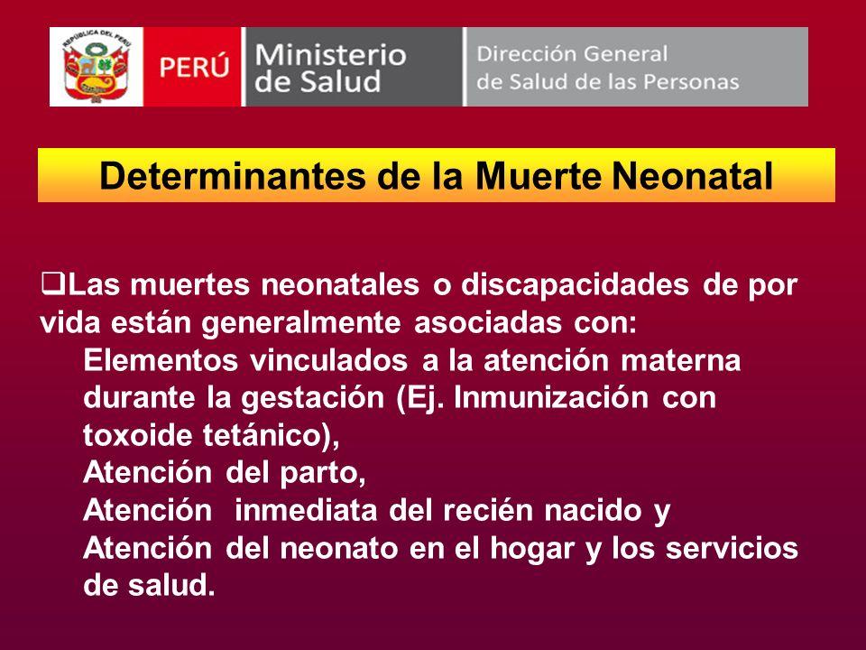 Determinantes de la Muerte Neonatal Las muertes neonatales o discapacidades de por vida están generalmente asociadas con: Elementos vinculados a la at