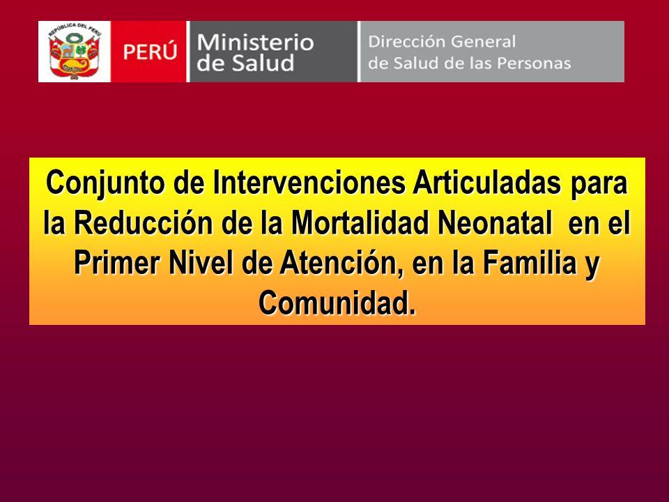 Conjunto de Intervenciones Articuladas para la Reducción de la Mortalidad Neonatal en el Primer Nivel de Atención, en la Familia y Comunidad.