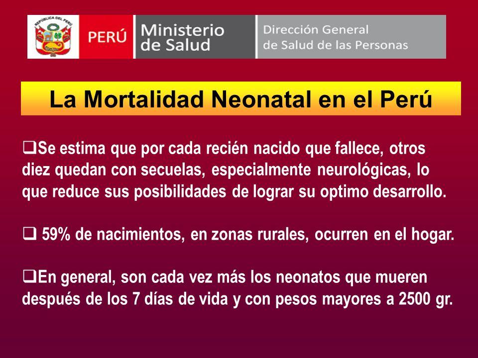 La Mortalidad Neonatal en el Perú Se estima que por cada recién nacido que fallece, otros diez quedan con secuelas, especialmente neurológicas, lo que