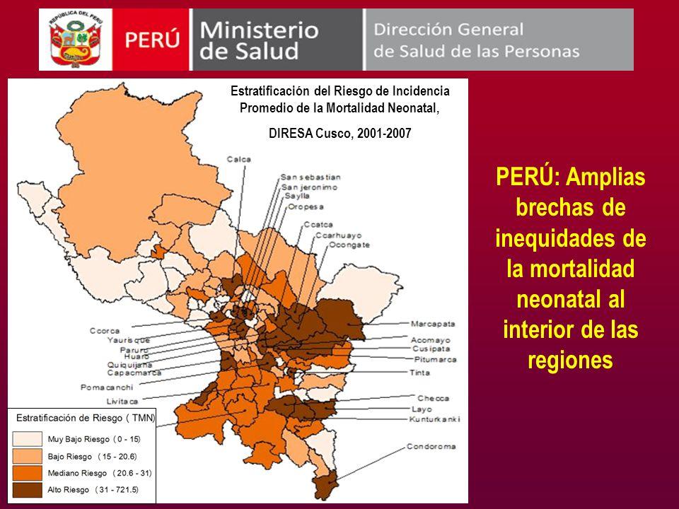 Estratificación del Riesgo de Incidencia Promedio de la Mortalidad Neonatal, DIRESA Cusco, 2001-2007 PERÚ: Amplias brechas de inequidades de la mortal