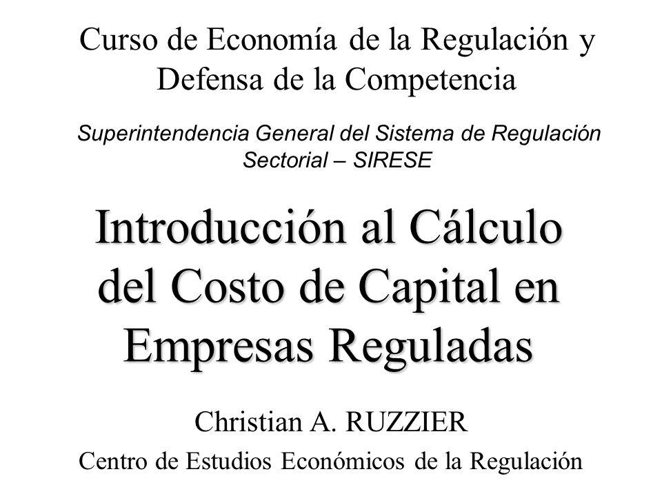 Introducción al Cálculo del Costo de Capital en Empresas Reguladas Christian A. RUZZIER Centro de Estudios Económicos de la Regulación Curso de Econom