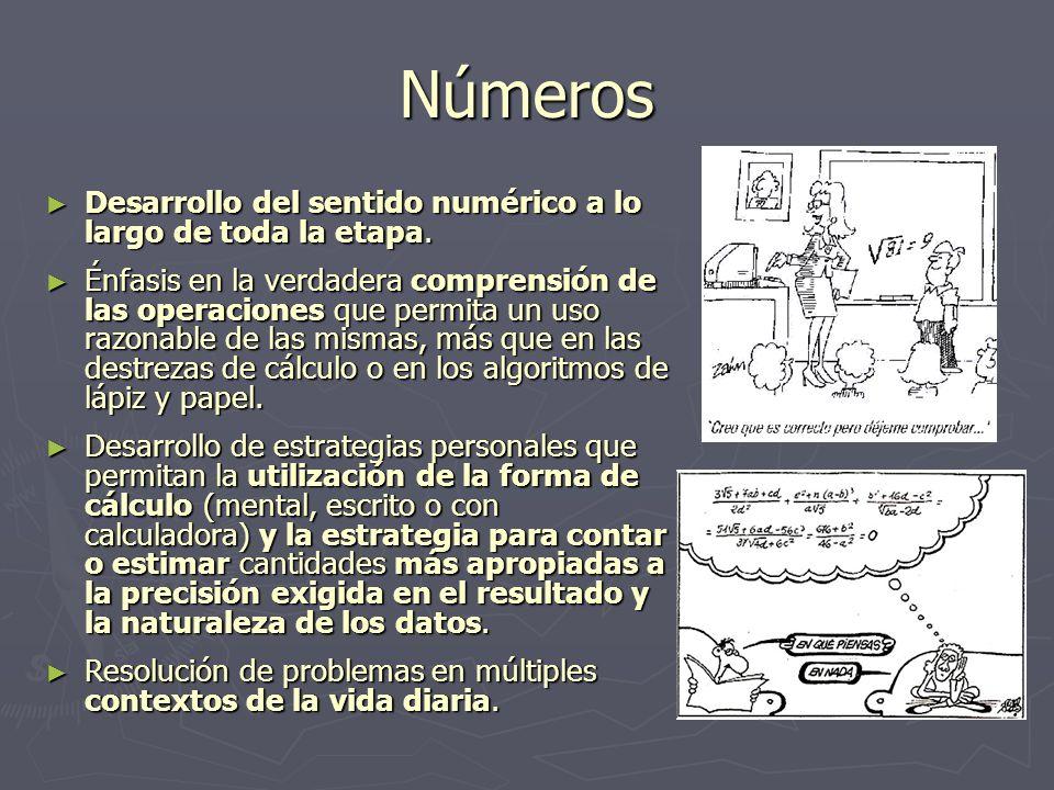 Números Desarrollo del sentido numérico a lo largo de toda la etapa. Desarrollo del sentido numérico a lo largo de toda la etapa. Énfasis en la verdad