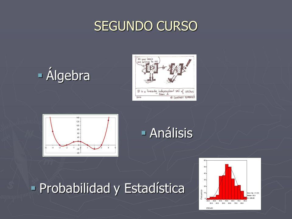 SEGUNDO CURSO Álgebra Álgebra Análisis Análisis Probabilidad y Estadística Probabilidad y Estadística